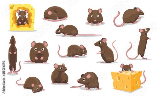 Photo  Cute Brown Rat Various Poses Cartoon Vector Illustration