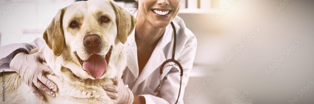 Fototapety, obrazy: Confident female veterinarian with dog