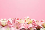 Composition with beautiful blooming lily flowers on color background