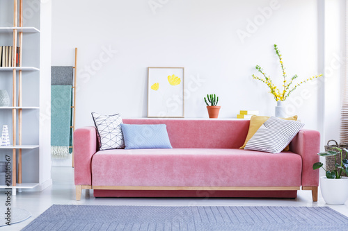 Colorful Pillows On A Big Velvet Pink Sofa In A Fun