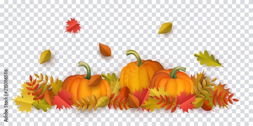 Obraz Autumn leaves and pumpkins pattern on transparent background. Seasonal floral maple oak tree orange leaves with gourds for thanksgiving holiday, harvest decoration vector design. - fototapety do salonu
