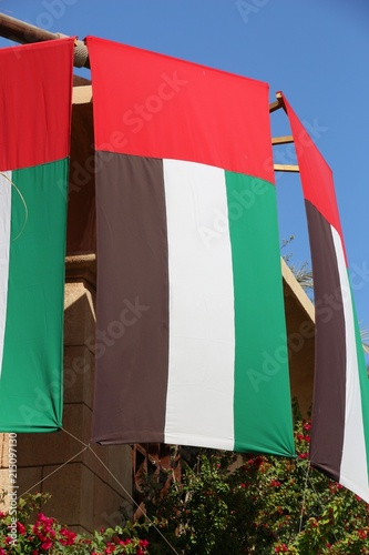 Photo  UAE flag
