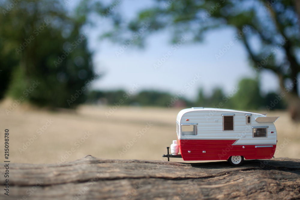 Fototapety, obrazy: Summer countryside caravan