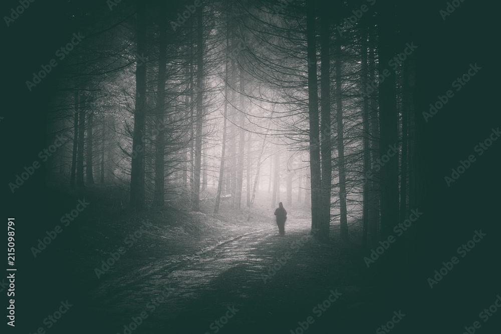Fototapeta Peson walking in path of dark and mysterious forest