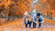 canvas print picture - buntes Herbstlaub sammeln