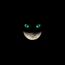Moon Smile - Alice In Wonderla...