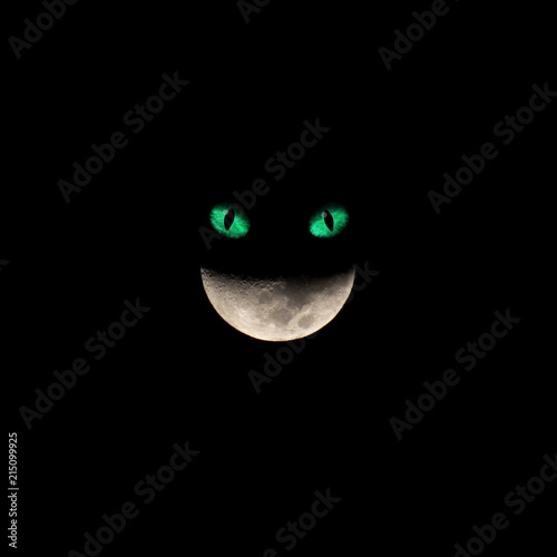 Photo Moon smile - Alice in Wonderland Cat