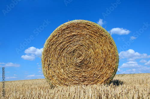 Fotografía Round bale of straw on a field and blue sky