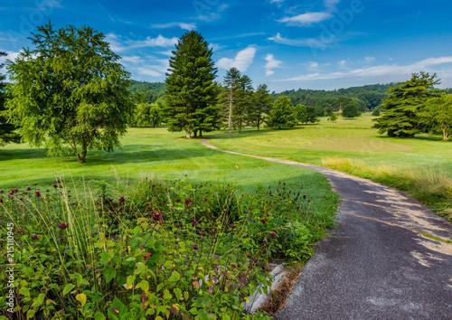 Poster Landschap Pathway winds through summer park in North Carolina.CR2