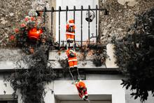 Three Santa Claus Figures Clim...