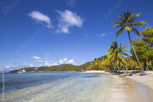 St Vincent and The Grenadines, Mustique, Brittania Bay beach