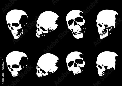 Set of hand drawn skull silhouette isolated on black background Canvas Print