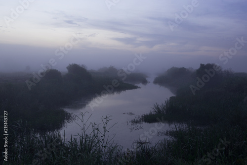 A misty blue sunrise over a marshy landscape