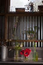 A Flower Farmer Designs And Di...