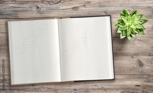 Open book succulent wooden background Minimal flat lay
