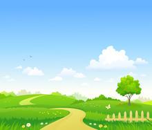 Rural Summer Path