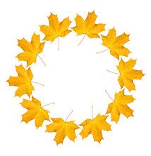 Wreath From Dry Orange Maple Leaves. Autumnal Round Frame On A White Background