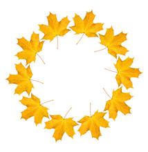 Wreath From Dry Orange Maple L...