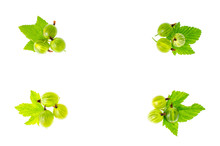 Berries And Gooseberry Leaves On White Background