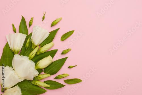 biale-kwiaty-na-rozowym-tle