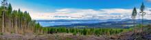 Panoramic View Of Ladysmith Sh...
