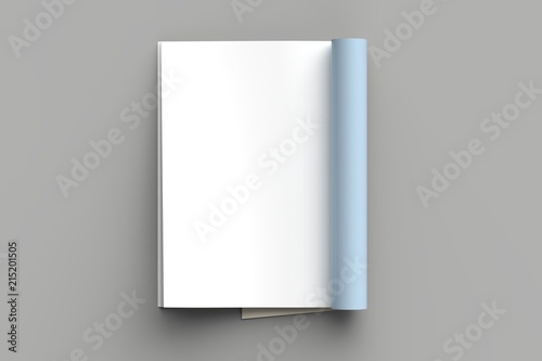 Magazine, brochure or catalog mock up isolated on gray background Canvas-taulu