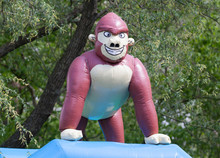 Inflatable Gorrila On A Bounci...