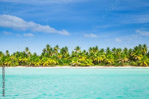 Montage in der Fensternische Karibik Palms trees grow on the beach of Saona