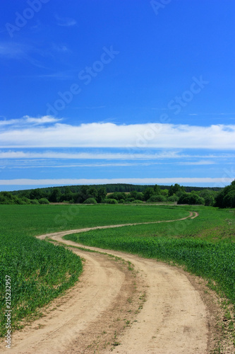 Foto op Canvas Beige A dirt road in the field