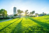 Fototapeta Miasto - city skyline with green lawn