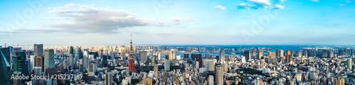 Foto op Plexiglas Stad gebouw 東京の景観