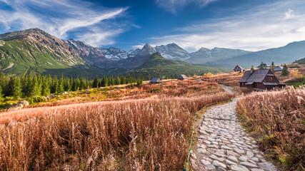 Fototapeta Optyczne powiększenie Wonderful path in the mountain valley, Tatras in Poland