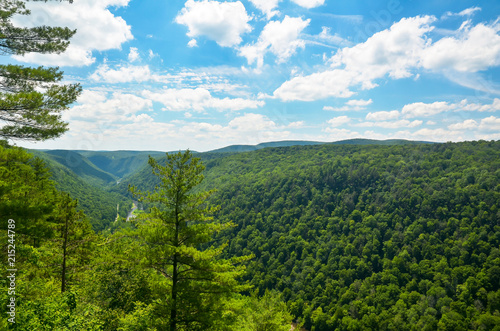 Pine Creek Gorge, also called the Grand Canyon of Pennsylvania Wallpaper Mural