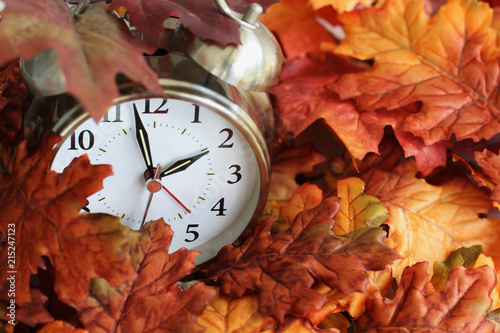 Canvastavla  Vintage alarm clock buried underneath colorful fallen autumn leaves with shallow depth of field