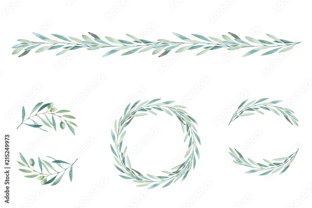 Fototapety, obrazy: Watercolor olive branch. Sketch of olive branch on white background