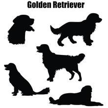 Golden Retriever Purebred Dog ...