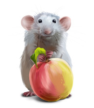 A Gray Mouse And A Large Apple. Watercolor Drawing