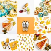 Fashion Collage Of Autumn Photos.