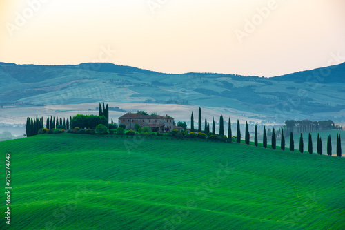 Aluminium Prints Tuscany The most beautiful view in Tuscany Italy.