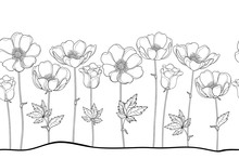 Vector Seamless Pattern Of Outline Anemone Or Windflower, Bud And Leaf In Black On The White Background. Horizontal Border With Ornate Contour Anemones For Spring Or Summer Design Or Coloring Book.