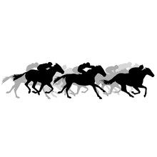 Horse Race - Silhouette Of Run...