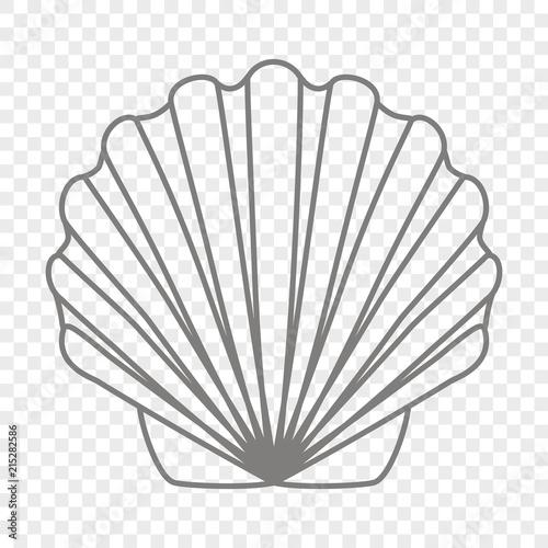 Foto Contour transparent shell scallop