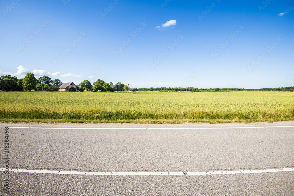 Fototapeta A view of the asphalt road through the country agricultural fields on a sunny summer day, Latvia