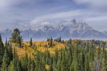 Teton Range With Grand Teton And Trees In Autumn Foliage In Foreground, Grand Teton National Park, Wyoming, USA