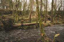 Female Hiker Sitting On The Fallen Tree Trunk Near The River
