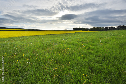 Keuken foto achterwand Weide, Moeras Countryside with Meadow in Spring, Reichartshausen, Amorbach, Odenwald, Bavaria, Germany