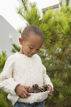 Boy Collecting Pine Cones In Sweater, Maryland, USA