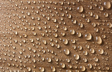 Water Droplets On Wood