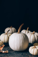 White Pumpkins With Golden Stem On Dark Background