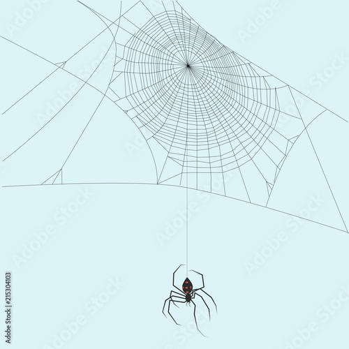 Photo  Black widow spider hanging down a string of spider thread and it's web